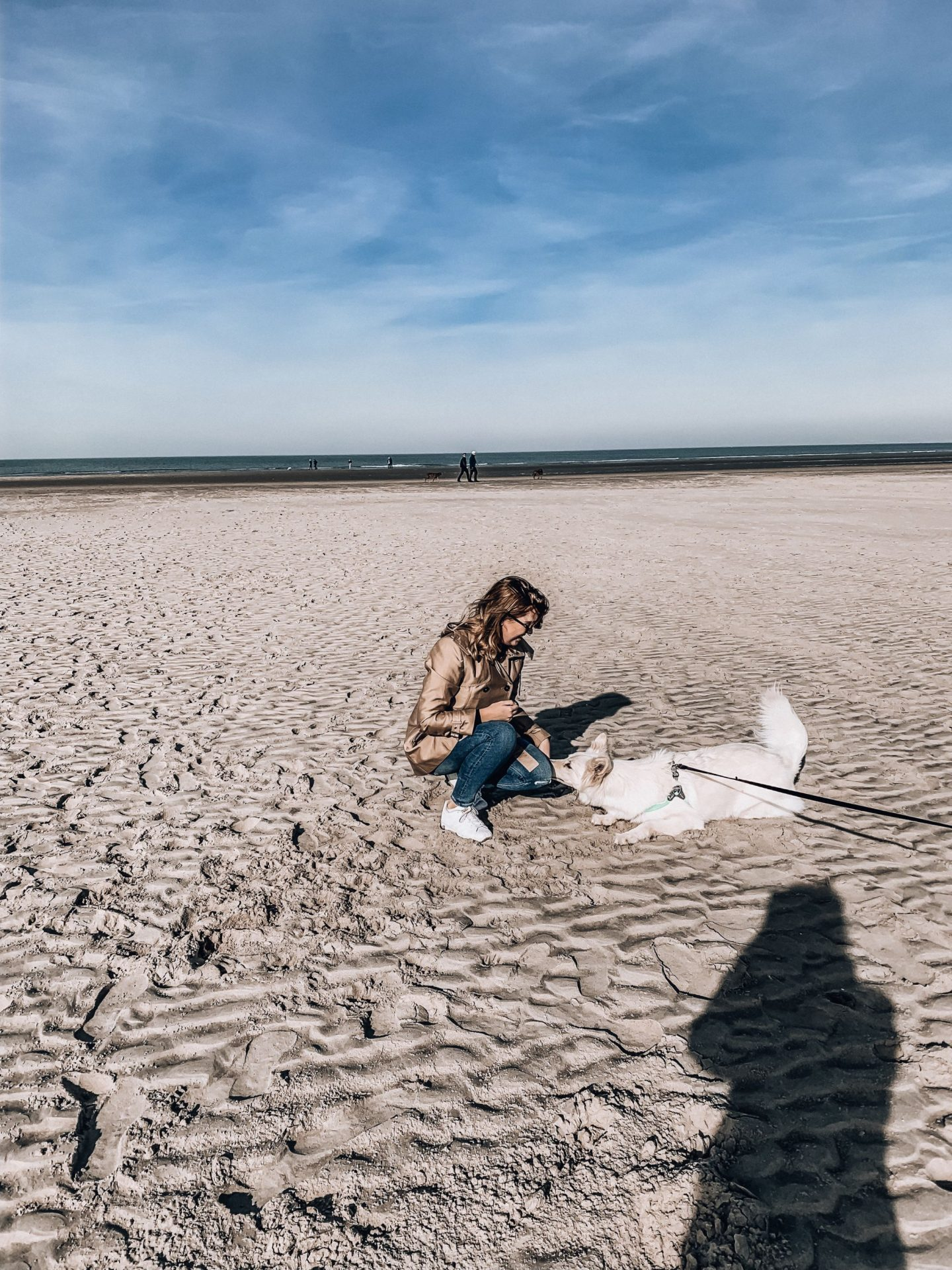 Silhouette, white dog, girl, ocean, beach