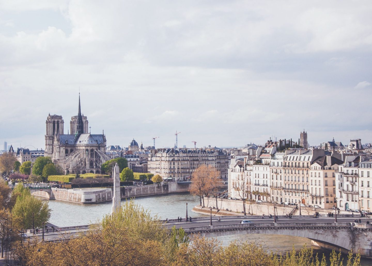 seine, notre dame, view, city, paris