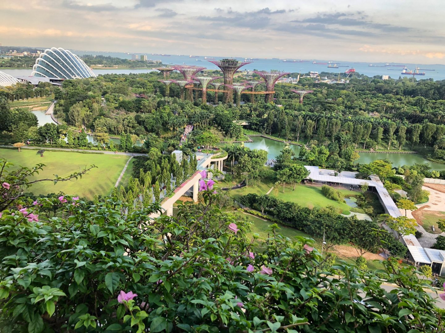 gardens by the bay, Singapore, view, nature, cloud forest, travel, wanderlust, traveling, travel blogger, highlights