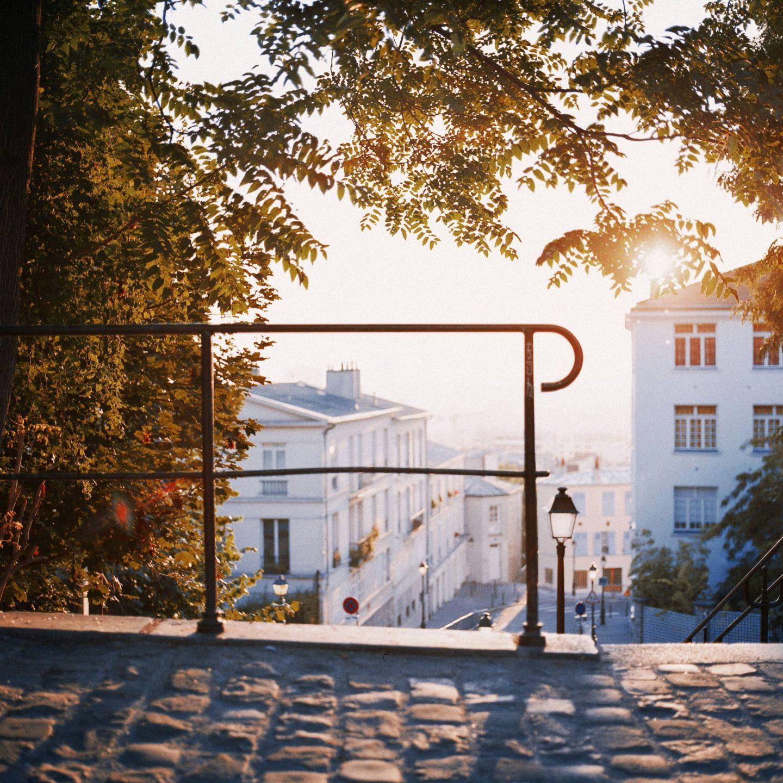 sunset, tree, paris, city, guide, sunset, buildings, sun