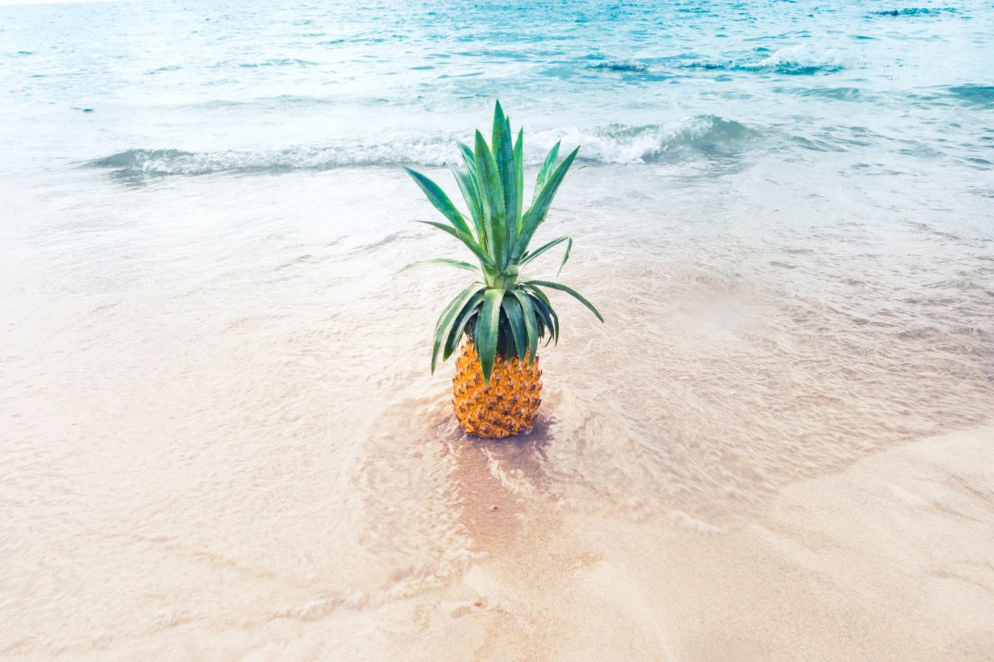 pineapple, ocean, beach, summer