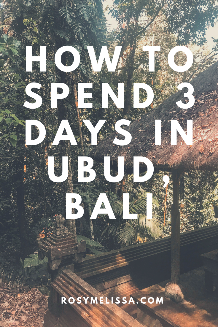 how to spend 3 days in Ubud, Bali, Indonesia, tips for your stay in ubud, activities to do in ubud, travel inspiration, photography