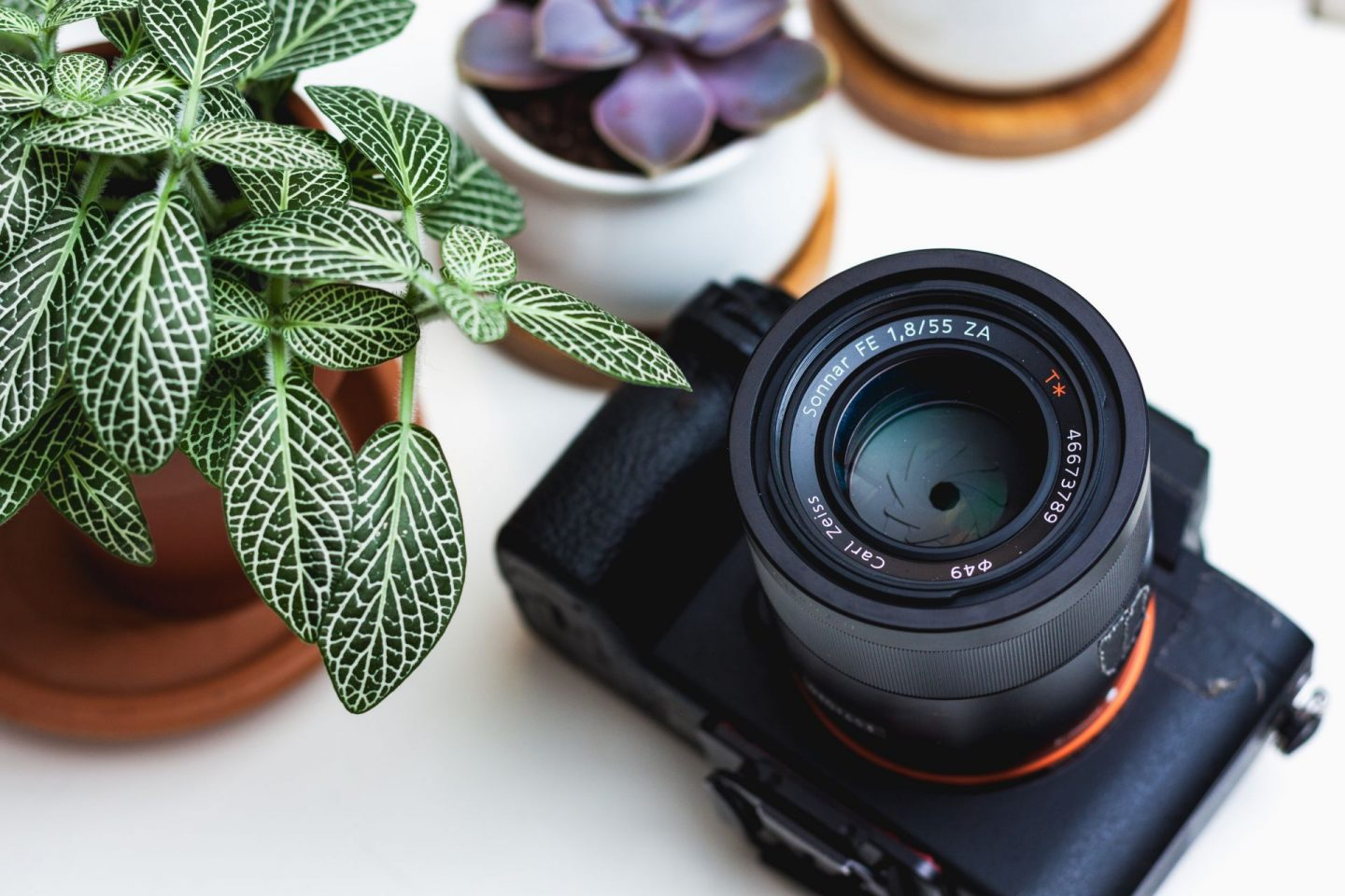 camera, travel photography, slr camera, mirrorless camera, travelling, travel, wanderlust, reasons to take pictures, why taking pictures changed the way we travel