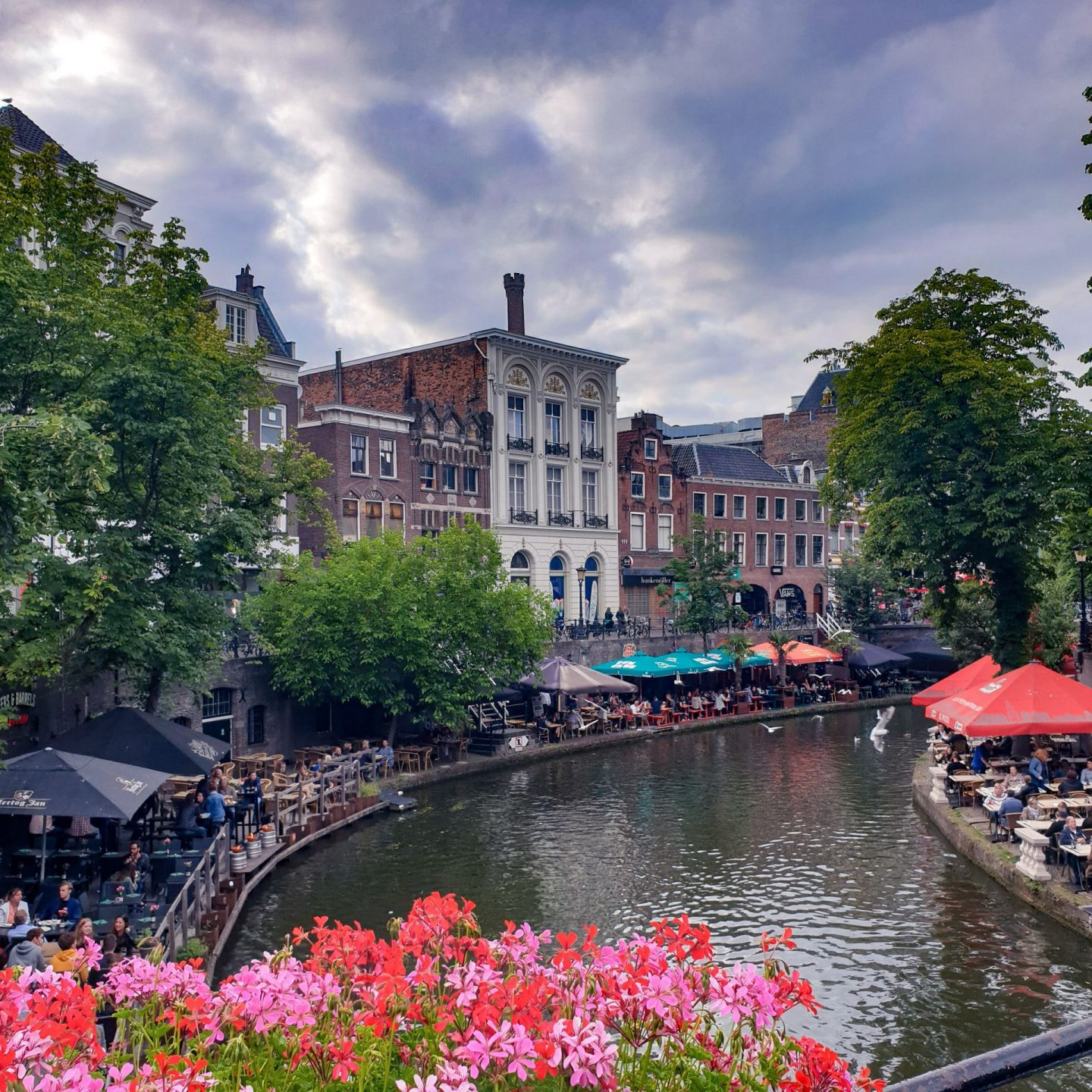 dutch cities, the netherlands, holland, dutch cities to visit besides amsterdam, utrecht, canals, water, travel, wanderlust