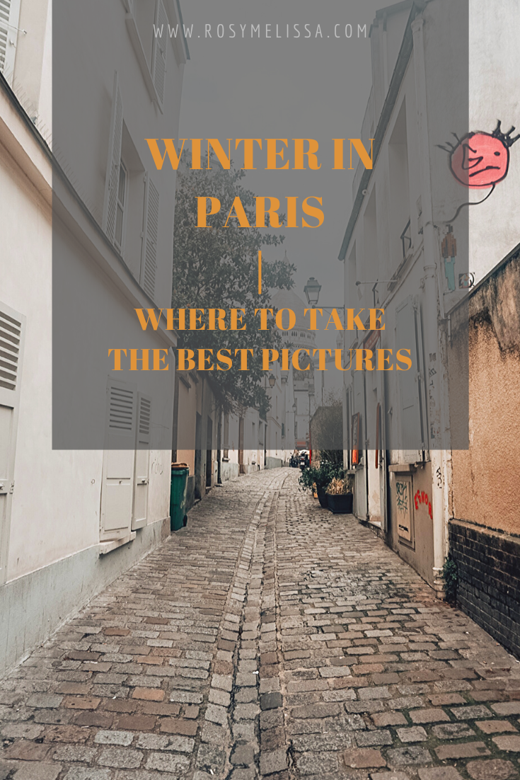 winter in paris, france, best places to take pictures in paris, tips, photograhy, l'howea, montmartre, eiffel tower, back streets in paris