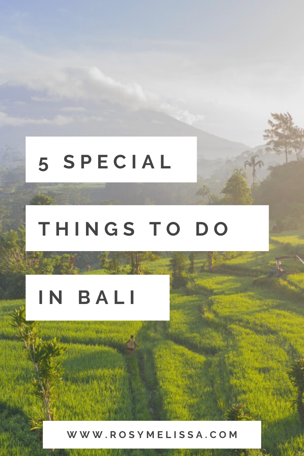 where to stay in bali, where to go in bali, things to do in bali, bali activities, bali tips, island guide