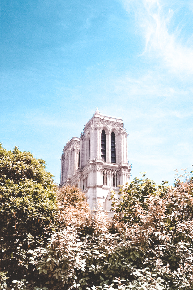 the paris guide to le marais, where to go in le marais, things to do in le marais, notre dame, activities in le marais, arrondissement