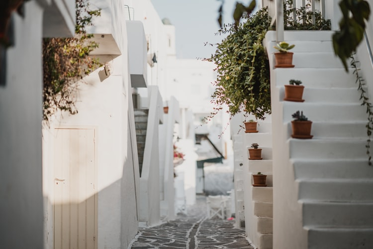 a street and stairs in paros, greece islands to visit next, flowers on the greece islands