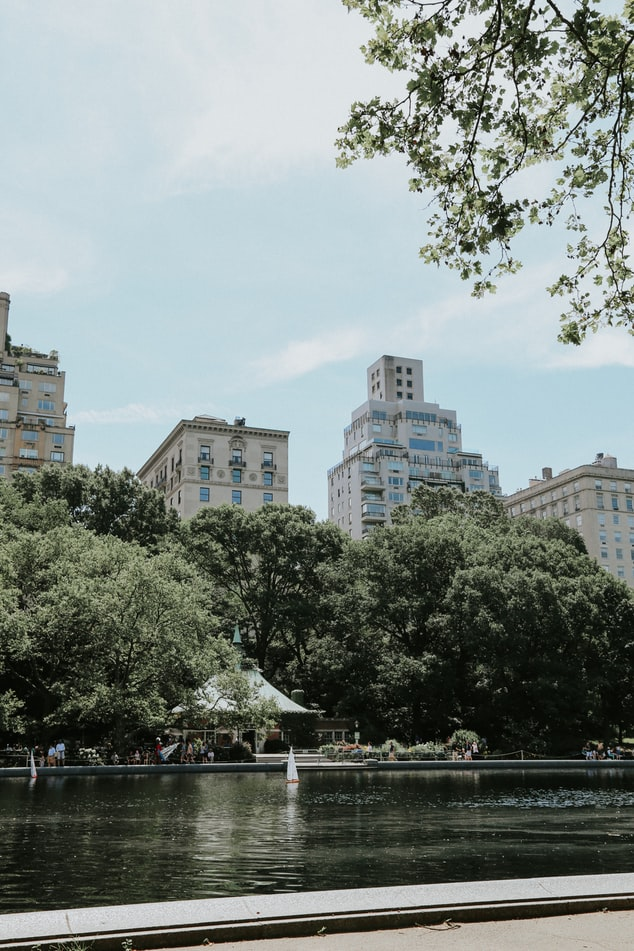a view on new york city from central park, new york quotes, trees and blue sky, water in central park