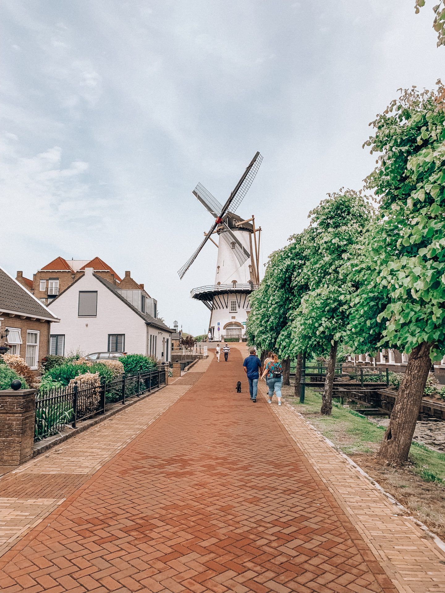 a windmill in willemstad with cute houses, trees and a blue sky