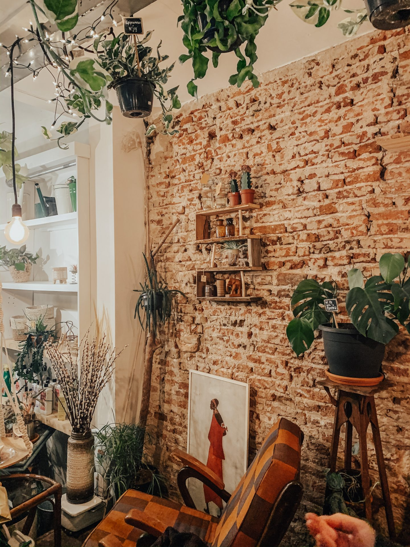a cute cafe in den bosch, the netherlands travel, brick wall with plants and art