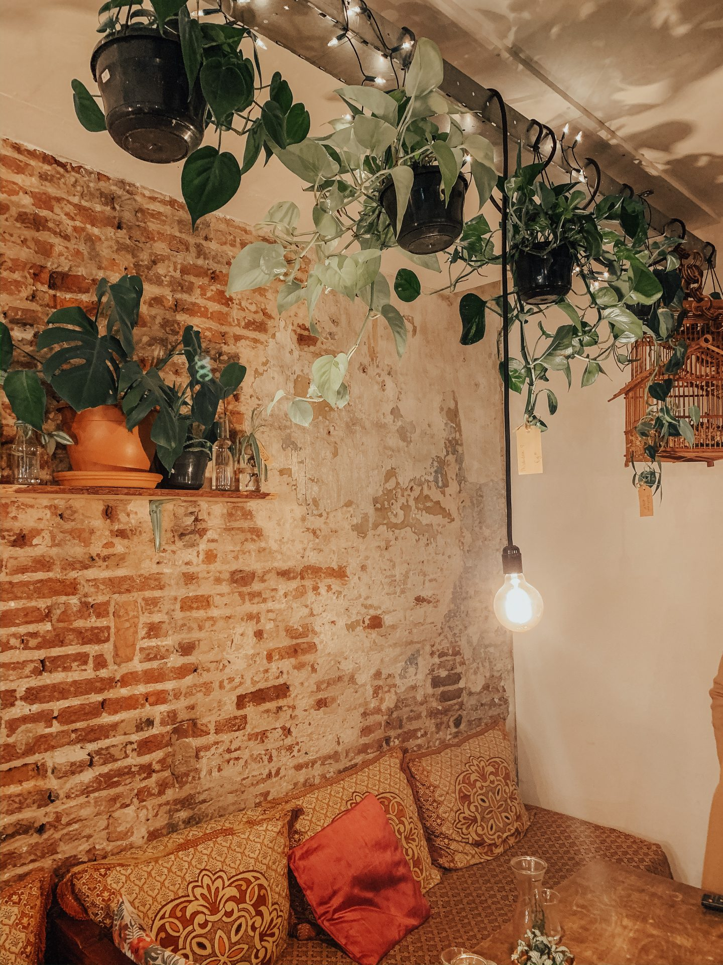 a brick wall in a cute cafe in the netherlands, lots of plants and sofas