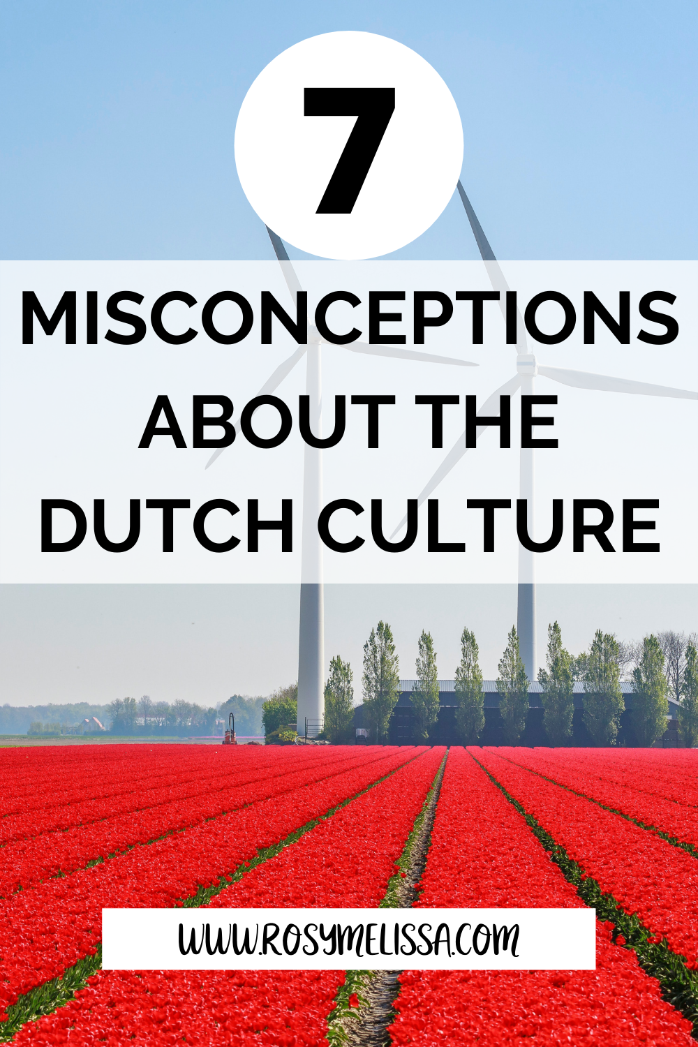7 dutch culture facts you need to know, dutch culture misconceptions, culture talk, the netherlands