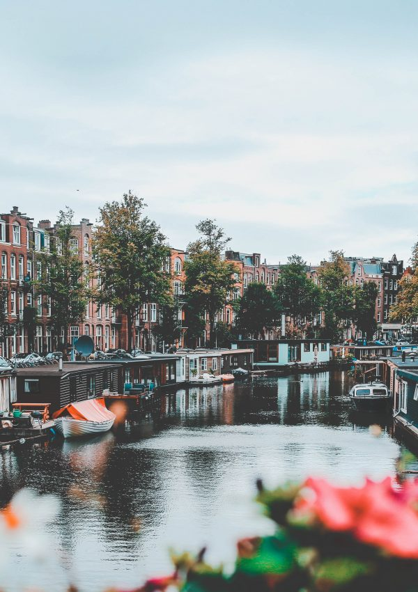 The 7 Dutch Culture Facts You Need To Know!
