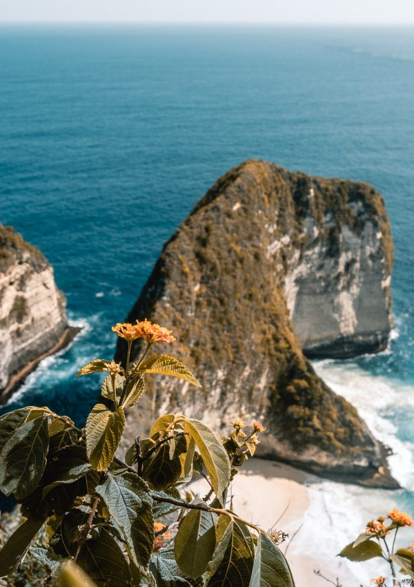 Is The Hype Around Nusa Penida Worth It?