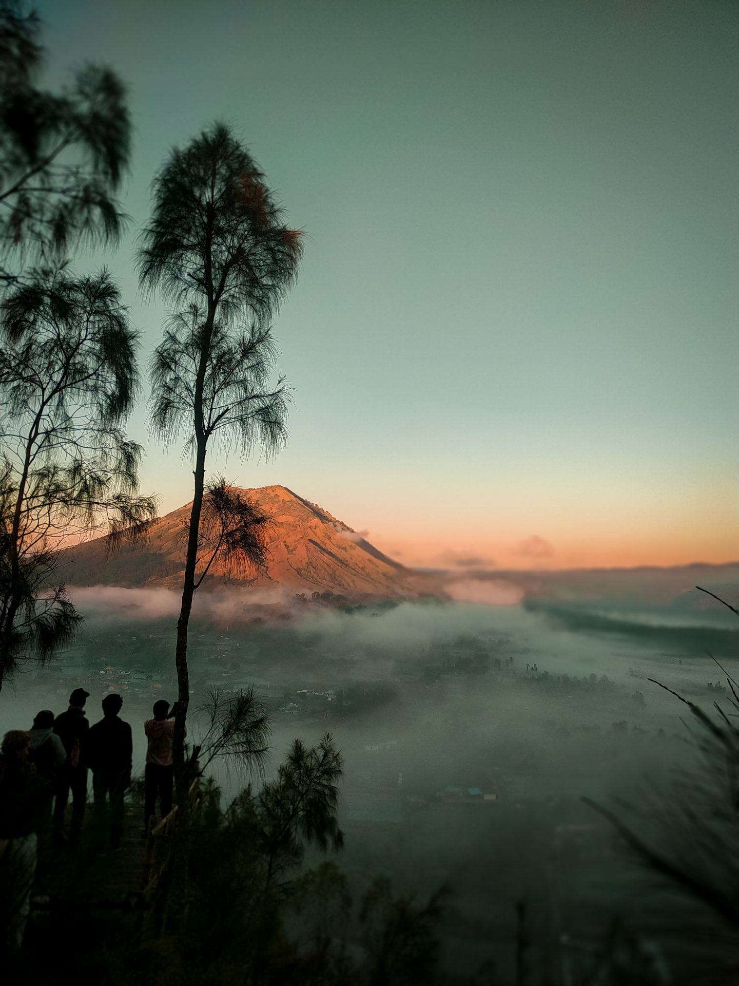 a view over mount batur during sunrise with low clouds and palmtrees