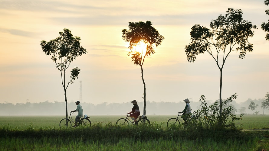 three man on a bicycle during sunset, palmtrees, indonesia, view