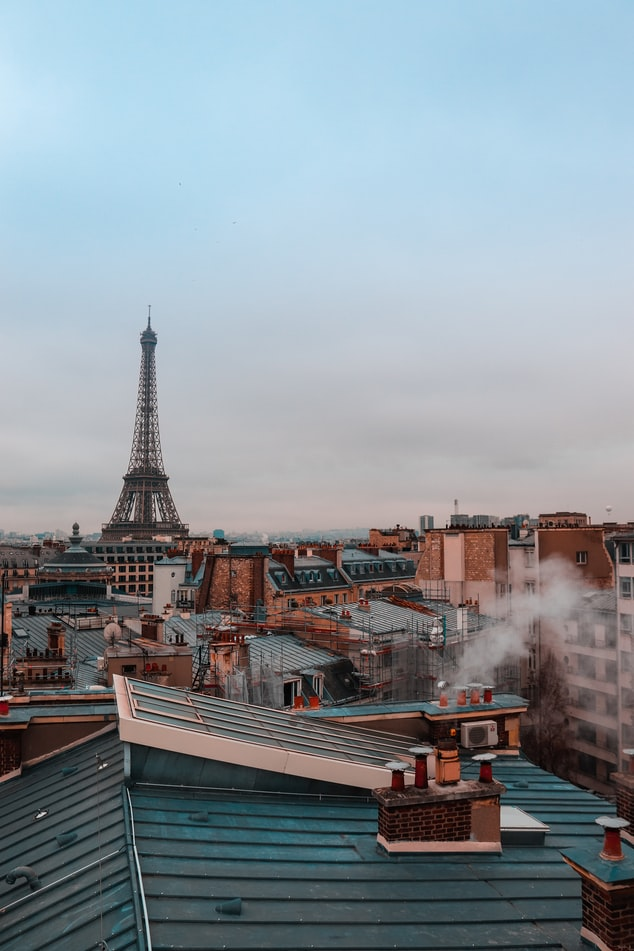 view on the eiffel tower from the rooftop in paris, france