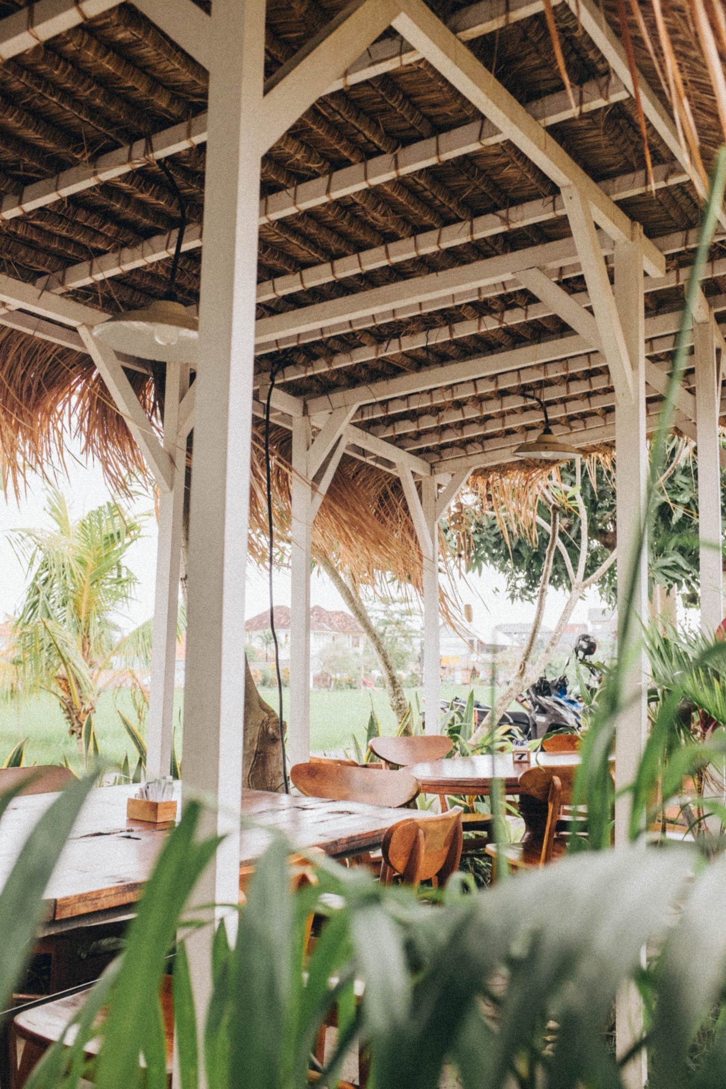 a restaurant in tropical bali, greenery and jungle vibes, vegan and vegetarian travel tips