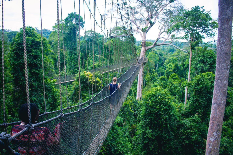 travel in ghana, bridge in nature, ghana travel