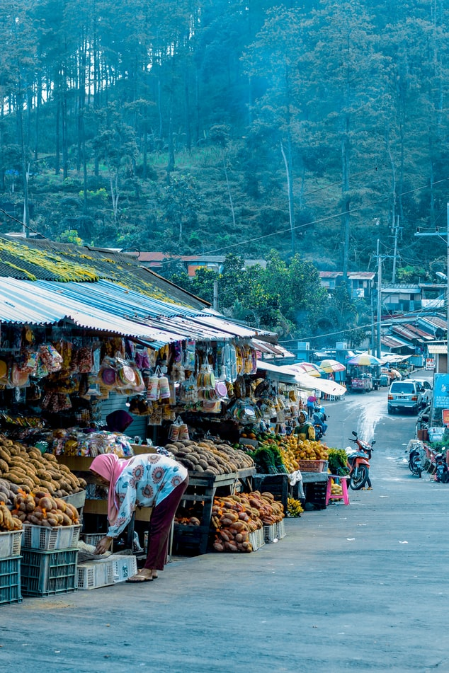 local market in indonesia, view over mountain and ricefields in indonesia