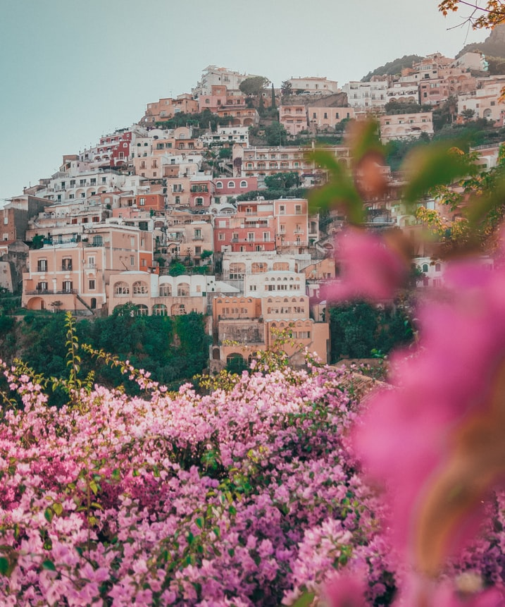 pink flowers with positano in the background on the hill, italy village