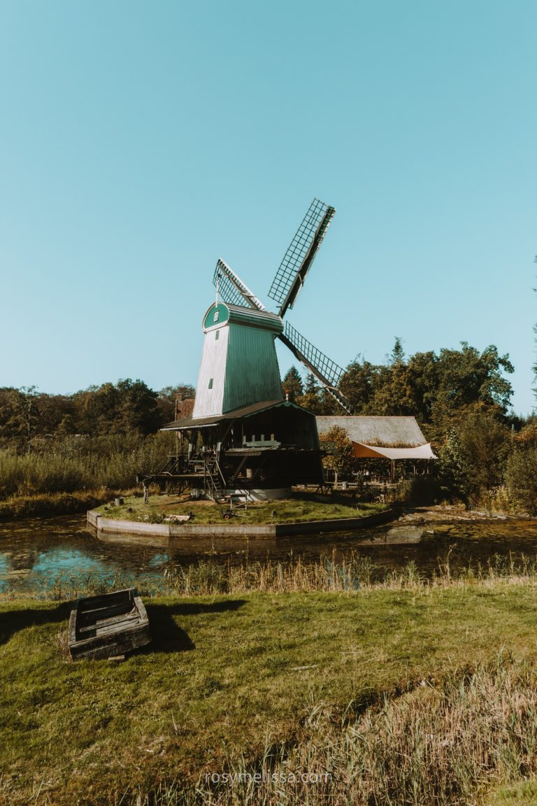 a shot of a windmill in nature with blue sky and greenery
