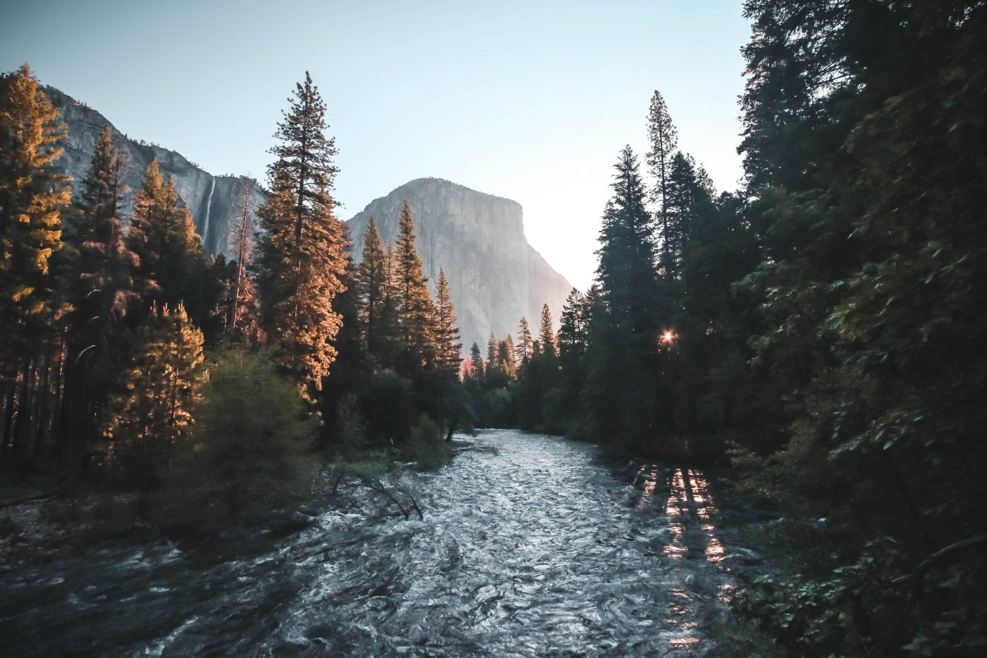 photo of a river surrounded by trees and mountains, protect our earth